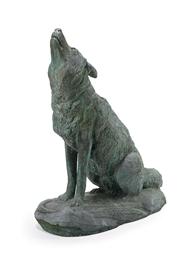 'Coyote'