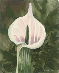 Single flower stem