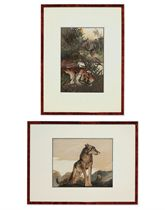 A SET OF EIGHT CHROMOLITHOGRAPHS FROM KIPLING'S 'THE JUNGLE BOOK'