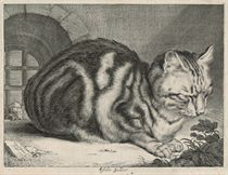 The Large Cat (Duthuit 46; Hollstein 42)