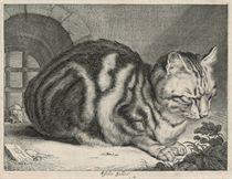 The Large Cat (Duthuit 46; Hollstein 42)