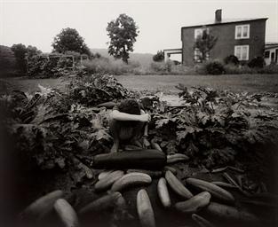 Emmett's Arm, 1991