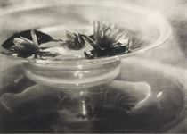 Water Lilies, c. 1906