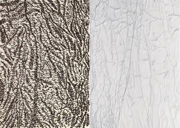 Pelle di marmo e spine d'acaci