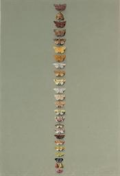Moths: Twenty-five smaller mot