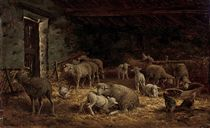 Sheep and poultry in a barn