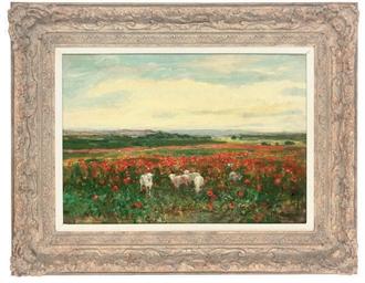 Lambs in a poppy field
