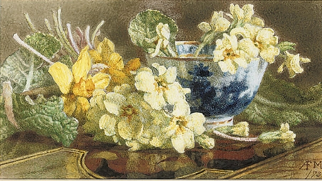 Still life of primroses, daffo