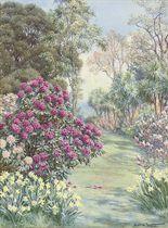 A Cornish Garden, Falmouth