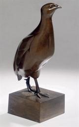 Rebhuhn: partridge