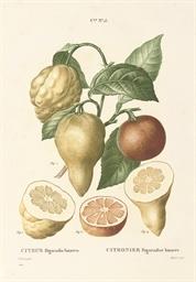 MICHEL, Étienne (fl. 1800-1820