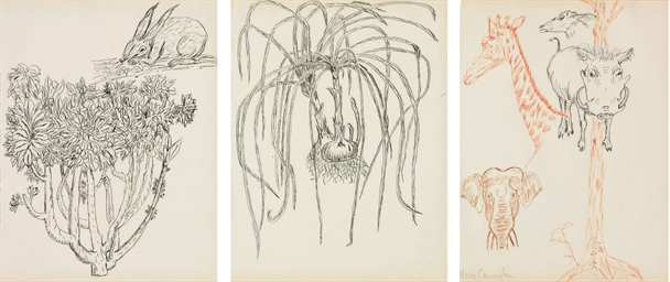 Untitled (Rabbit, Onions, Anim