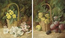 Primroses in a basket on a mossy bank; and Greengages in a basket, plums and damsons on a mossy bank