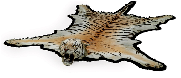 A TAXIDERMY TIGER SKIN