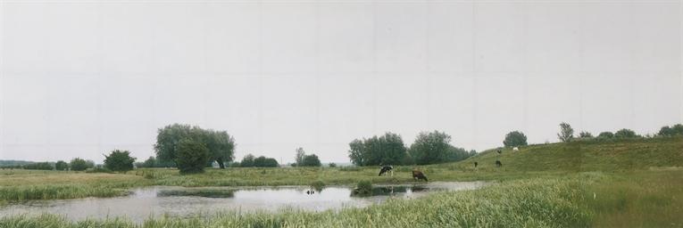 Untitled - Dutch Landscape