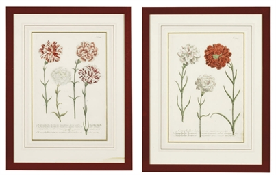 EIGHT STUDIES OF FLOWERS FROM