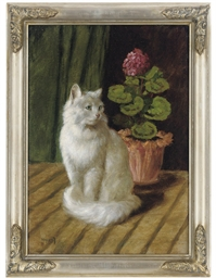A WHITE CAT WITH GERANIUMS