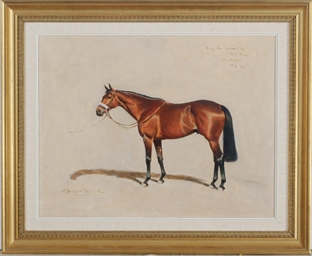 Study for Portrait of Red Rum
