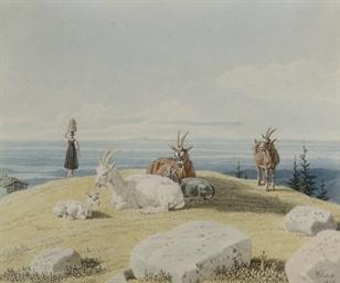 Goats on a hilltop