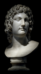 A CARVED MARBLE BUST OF ALEXAN