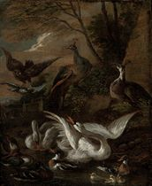 A swan, peacocks, ducks, ducklings and a hawk in a landscape