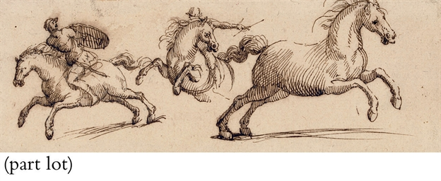 Three studies of rearing horse