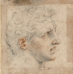 Head of a man, probably after