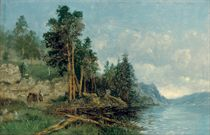 A figure on the banks of a Norwegian fjord