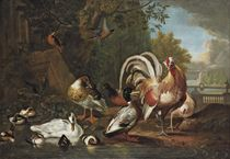 A cockerel, a hen, a pheasant, ducks, ducklings and kingfishers at the edge of a pond, in a park landscape with classical ruins