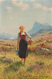 Summer in the Mountains, Norwa