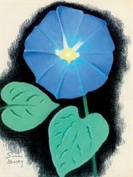 Volubilis Bleu