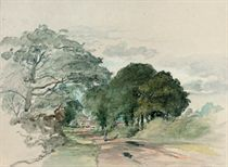 A country lane (illustrated); and Study of trees