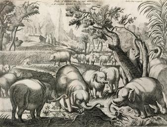 LUDOLF, Hiob (1624-1704). A Ne