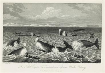 POLACK, Joel Samuel (1807-1882