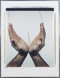 Handscape - Nude, 1980
