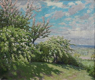 Blossom trees in a landscape