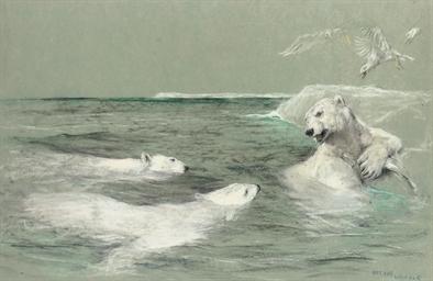 A polar bear defending his cat