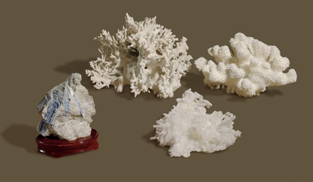 A GROUP OF CORAL AND MINERALS