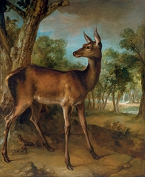 The Watchful Doe ('Biche aux A