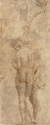 A standing male nude, seen fro