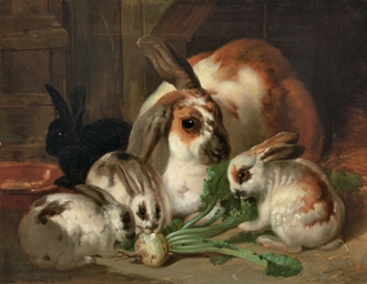 Rabbits in an Interior