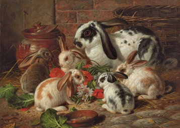 A Family of Rabbits