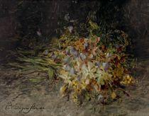 Ein Wildblumenstrauss (A spray of wild flowers)