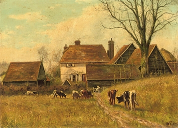 Cattle grazing by the cottages