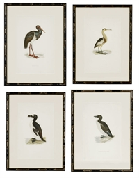A GROUP OF TWELVE PRINTS OF BI