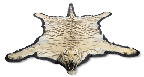 A TAXIDERMY MOUNTED TIGER SKIN
