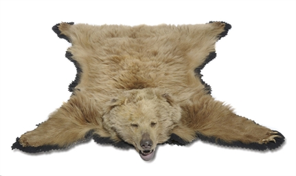 A TAXIDERMY MOUNTED BEAR SKIN