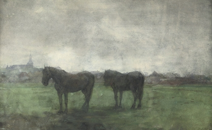 Two horses in a meadow, Hattem