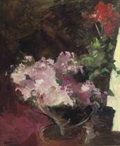 Roze bloemen: azaleas and geraniums