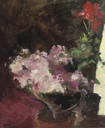 Roze bloemen: azaleas and gera